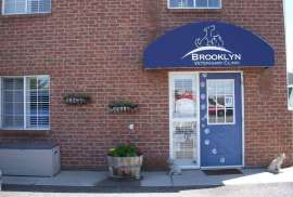 Brooklyn Veterinary Clinic